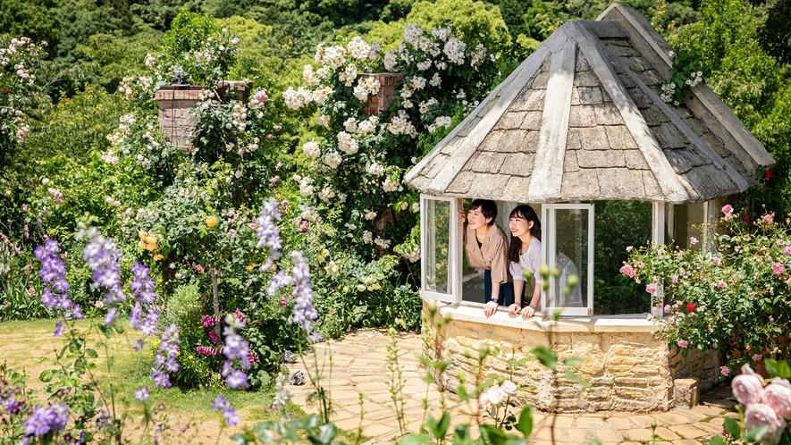 まるで物語の一コマのような、かわいらしい小屋のお庭もあります。