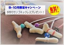 【9月-10月限定】☆彡スタッフ手作り珊瑚ネックレス☆彡 プレゼント♪