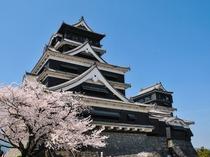 熊本城まで徒歩10分!観光・ビジネスの拠点に超抜群!
