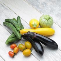 東北牧場の夏野菜