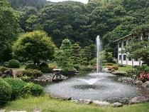 さわやかな水音が響き渡る日本庭園