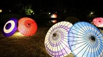 日本庭園で和傘のライトアップ