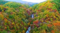 霧降の滝(紅葉シーズン)