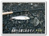 魚釣り01