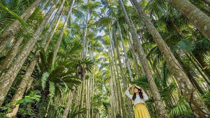 【人気観光地のチケット付き】東南植物楽園 亜熱帯ガーデンをお散歩♪<2泊〜>