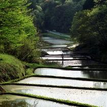 益子の風景 田園