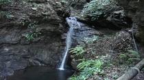 *【周辺観光/あじさいの里】大黒滝や八福神めぐり、野鳥観察、あじざいの里でお散布はいかがですか。