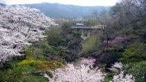 *【風景/春】四季折々に変わる風景も魅力でございます。