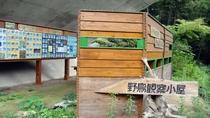 *【周辺観光/あじさいの里】野鳥観察小屋/自然いっぱいの八塩温泉で野鳥観察はいかがでしょうか。