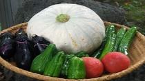 *【食材(イメージ)】地元のお野菜をふんだんに使用。新鮮なお野菜をお召し上がりください。