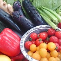 旬の野菜を取り入れた料理をご用意しております(イメージ)