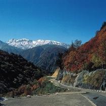 「白山スーパー林道」