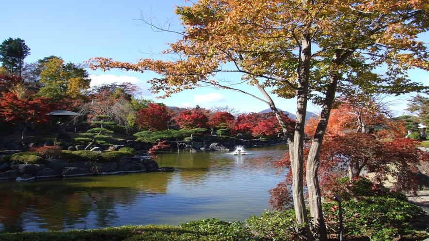 *秋の風景  紅葉の景色は圧巻です!