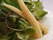 地元軽井沢の高原野菜を使った野菜サラダ