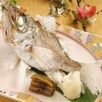 ☆白目鯛☆