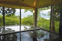 男性半露天風呂から望む芦ノ湖と富士(日帰り温泉 本館)