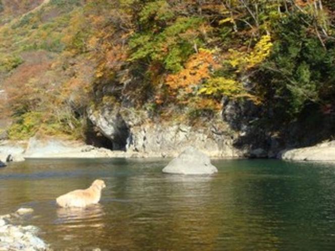 利根川にて