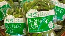 *【身延町特産/あけぼの大豆の枝豆】10月の限定販売です!