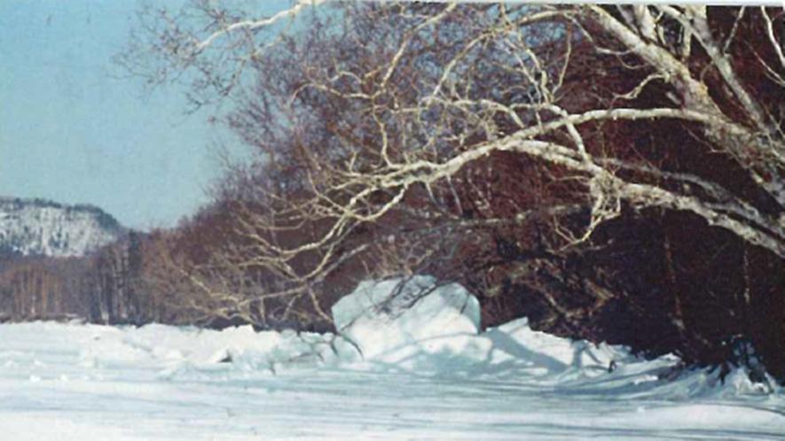 *【御神渡り】年により、寒い日が続くと湖面の氷が山脈のように盛り上がる「御神渡り」が見れます