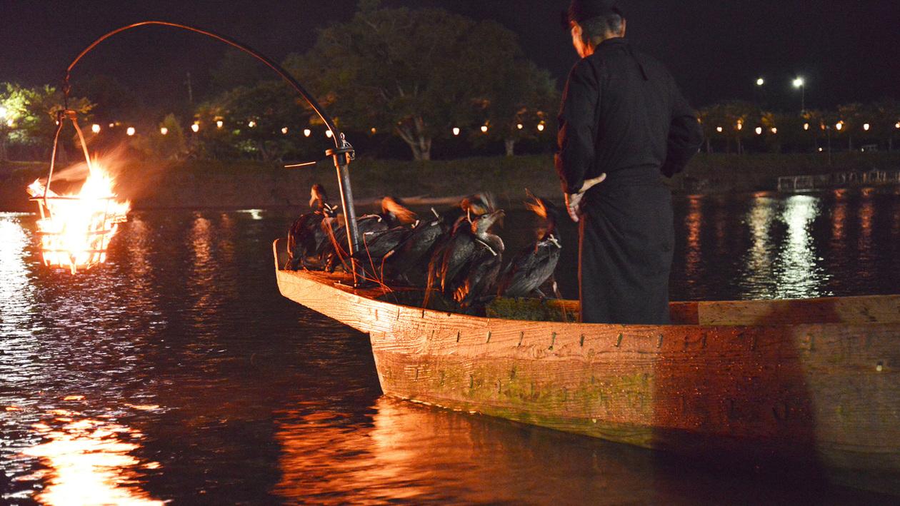 *【鵜飼遊覧】鵜飼の優美な技を間近で堪能。ぜひ水面の伝統芸能をお愉しみ下さい。
