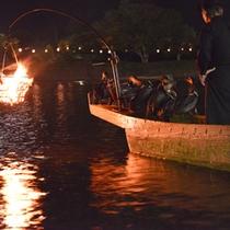 *鵜飼の優美な技を間近で堪能する「鵜飼遊覧」。ぜひ水面の伝統芸能をお愉しみ下さい。
