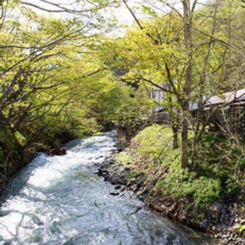 露天風呂沿いの渓流