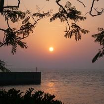 橘湾に沈む夕陽