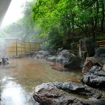 露天温泉岩風呂:初夏のイメージ