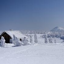 八幡平の樹氷