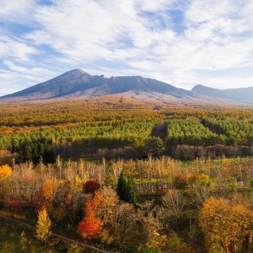 【展望ロビー】岩手山のふもとに紅葉が広がる景色。ここでしか見ることのできない光景です。