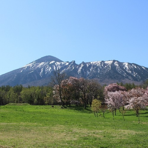 【春の岩手山】
