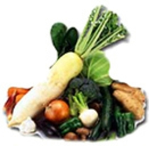 自家生産の減農薬野菜