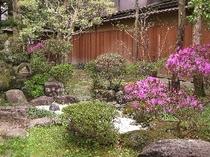 春の日本庭園
