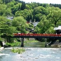 新緑の赤い中橋