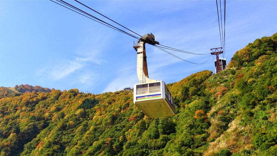 【周辺観光】湯沢高原アルプの里(紅葉)
