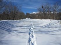 乗鞍高原冬景色