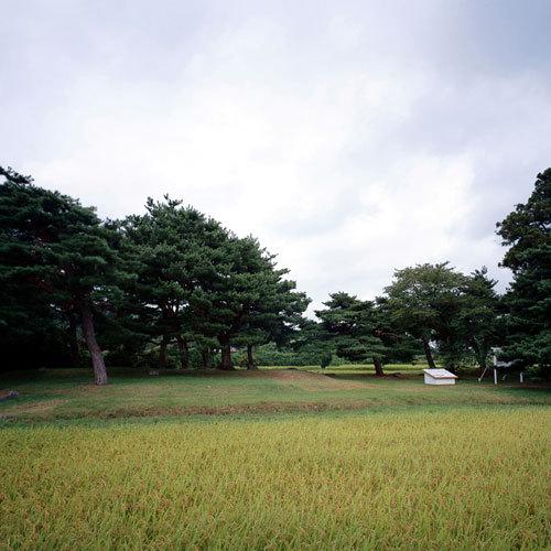 芭蕉も、こんな風景を見たのでしょうか。想いを馳せて観光するのも平泉ならではです。