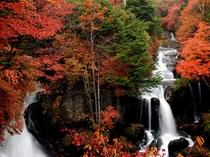 竜頭の滝(秋)