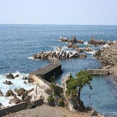 【個室で昼食×温泉】 『越前浜の風、宴』  縁起のいい、美味しい組合せ♪ ★ お祝い事にも♪