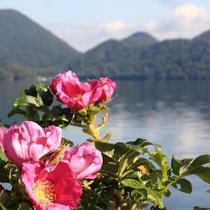 ◆洞爺湖は豊かな自然を有する観光地です。