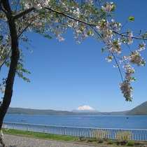 ◆春には桜が楽しめます