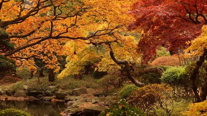 【秋のリラクゼーション30分】季節の変わり目にオススメ選べる3つのプチコース◆贅沢1人旅にも♪
