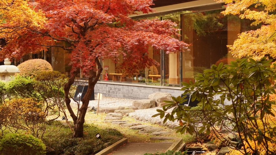 日本庭園 秋