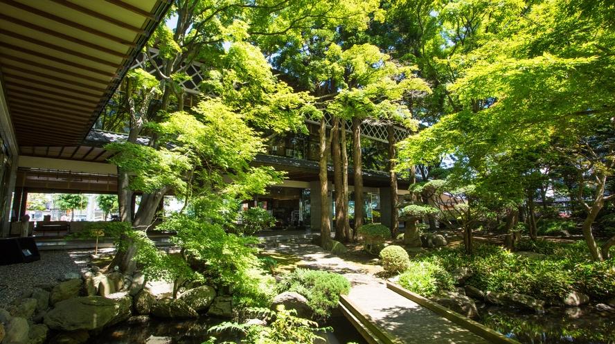【日本庭園】見ているだけで癒されます