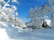 雪のペンションビレッジ エルムP 前