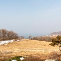 ホテルからの景色(丘)