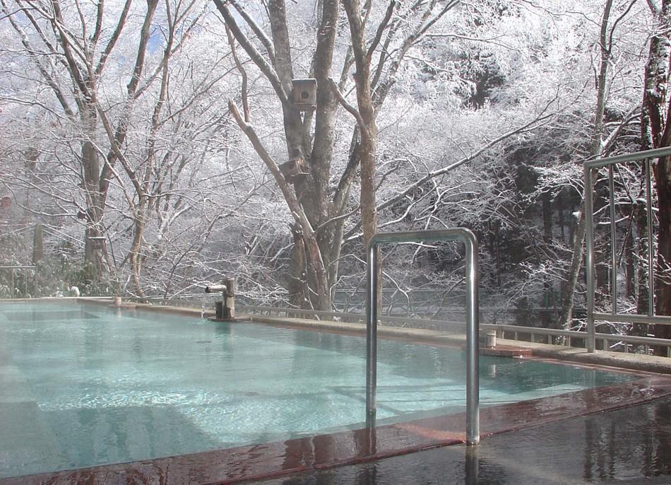 冬混浴野天風呂(福祉風呂扱い)