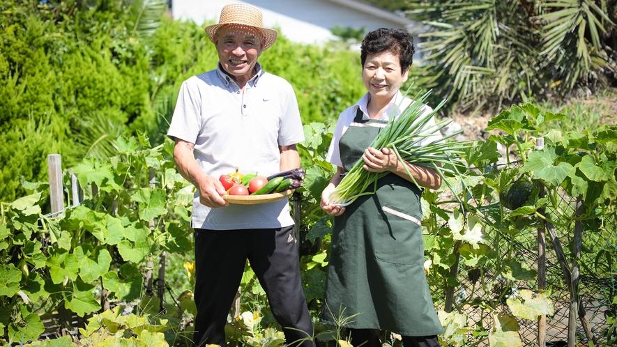 大女将と会長が育てている新鮮な野菜をおだしすることもあります。