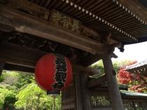 鎌倉-長谷寺-