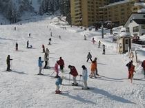 一本杉スキー場全景
